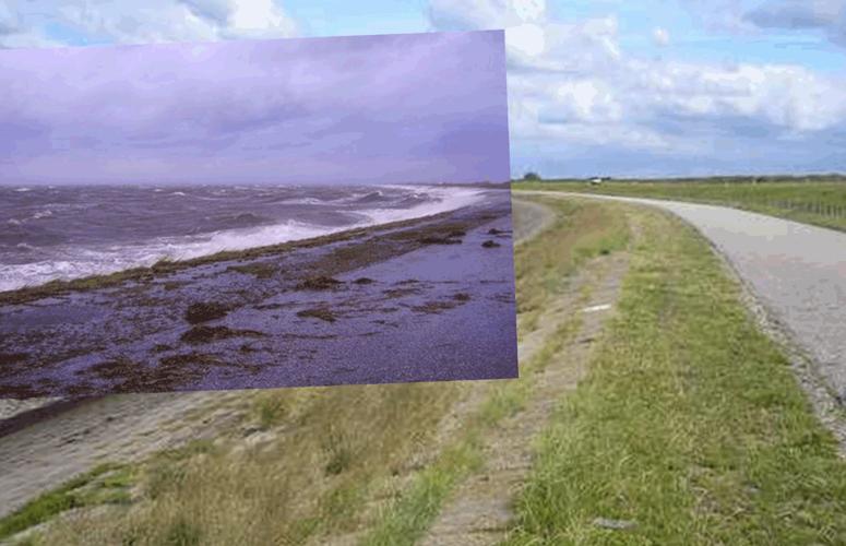 oesterdam-3-collage-bft